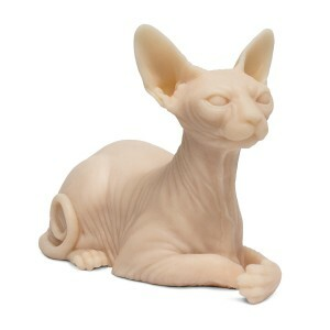 tattooable-sphynx-cat-silicone-1