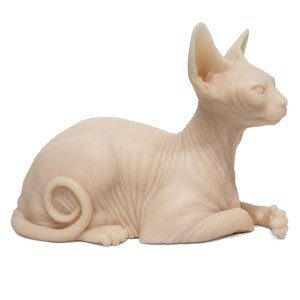 tattooable-sphynx-cat-silicone-2